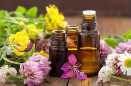 Tinh dầu tỏi là gì? Tác dụng của tinh dầu tỏi có tốt không?